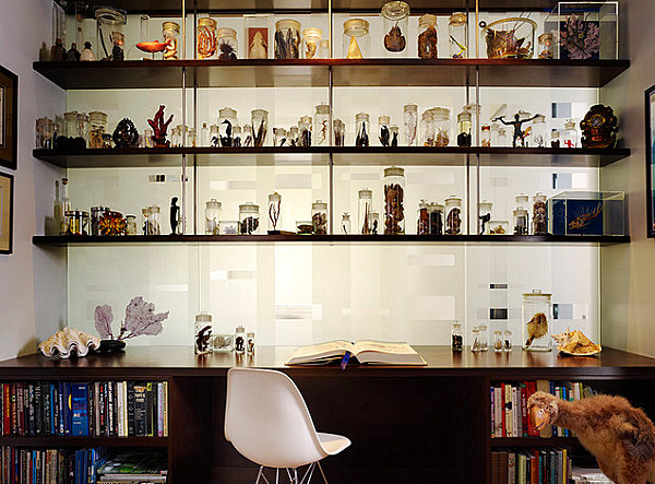 How to show your collection with skill and taste - original shelves in your interior