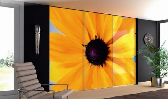 Цветок на дверцах шкафа-купе