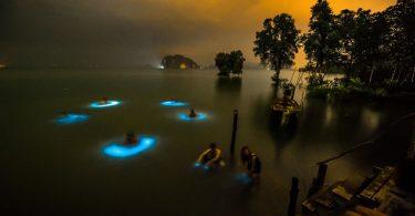 Съёмка в полнолуние от Уилла Стратманна: светящийся планктон в водоёмах Таиланда