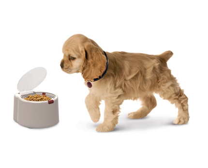 Микрочип, открывающий тарелку с кормом для животных по потребности