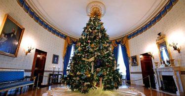 Оформим главный предмет Нового года: создание идеальной праздничной ёлки в домашних условиях