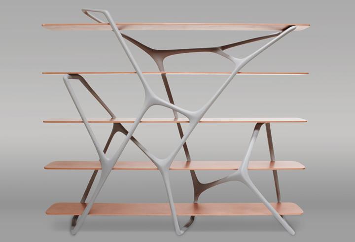 Интересная форма стеллажа Naturoscopie от Noé Duchaufour-Lawrance