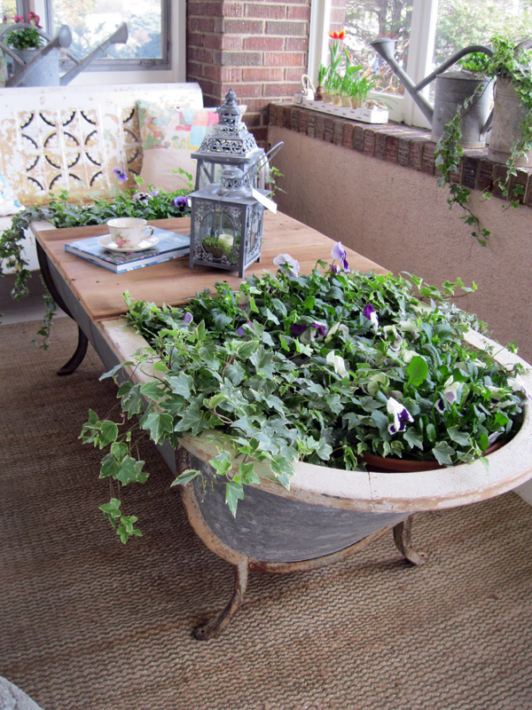We find the use of obsolete things: original containers for home and garden plants