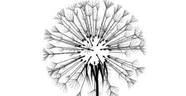 Гипнотические анимированные GIF файлы от Фредерика Вайссузе-Форе