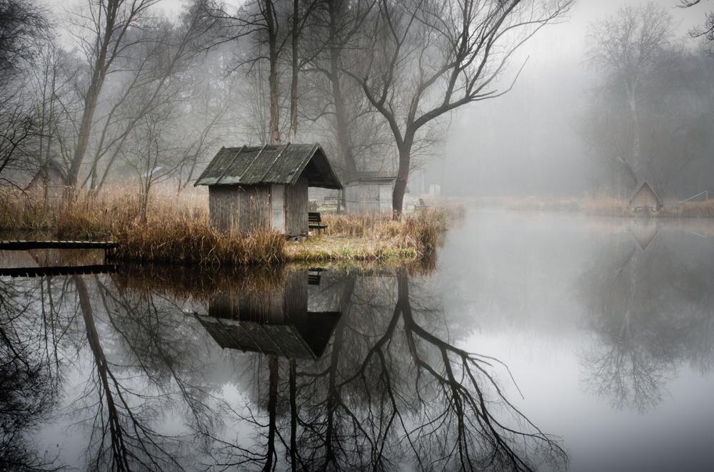 отражения в воде фото