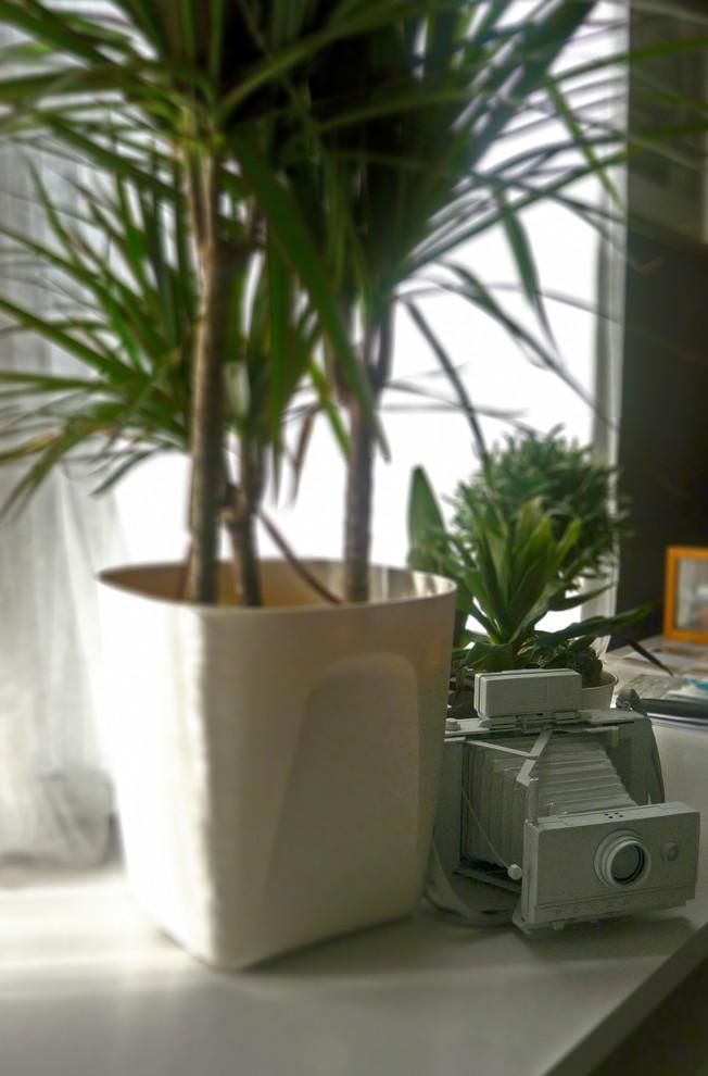 Старинная фотокамера в интерьере