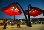 Интерактивные красные маки на площади Валеро в Иерусалиме