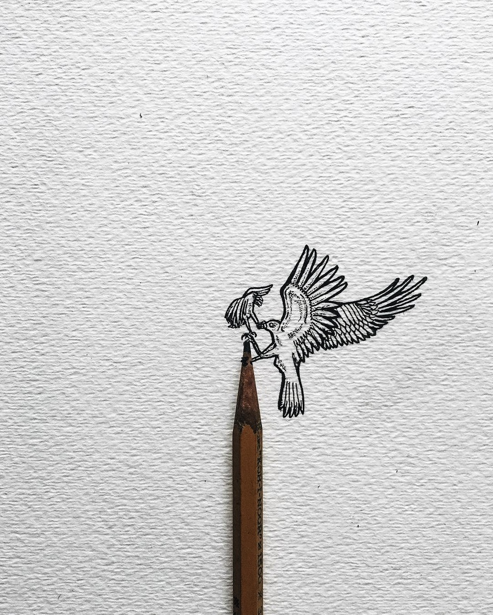 Кристиан Уотсон: графические миниатюры, нарисованные тушью и карандашом