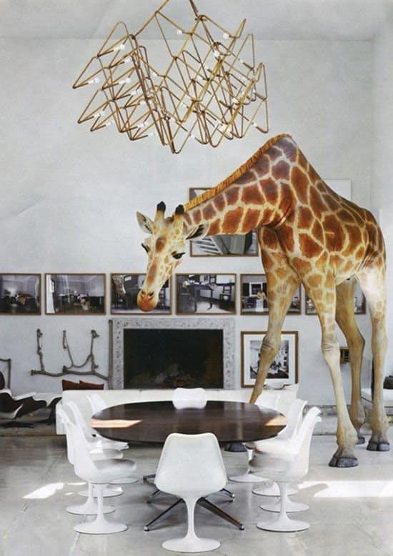 Необычный акцент: жираф в интерьере