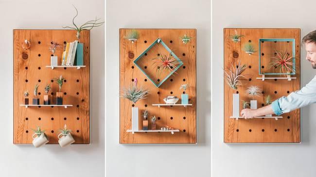 Живая стена из растений: неприхотливые растения